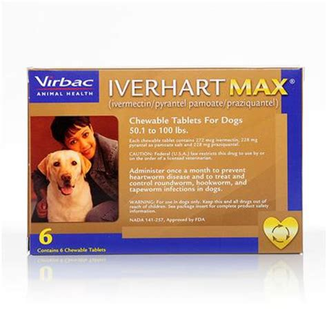heartworm pills for dogs iverhart max for dogs heartworm chewable petcarerx