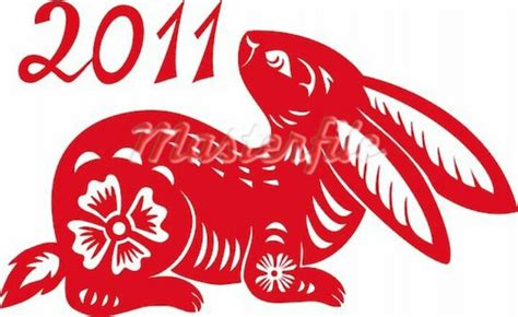 new year of rabbit year of the rabbit idea