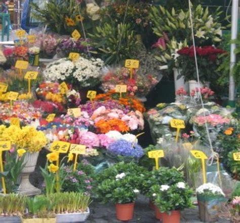 zona co dei fiori roma simple casa vacanze roma vicino co dei fiori casa