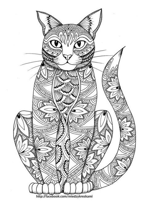 stay pawsitive cat coloring book for adults relaxing and stress relieving cat coloring pages coloring books volume 4 books free coloring page for adults coloriage zen