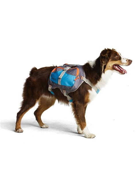 backpack for dogs cesar millan backpack cesar s way
