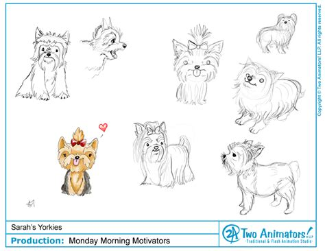 how to draw a yorkie puppy step by step how to draw a yorkie search animation illustration