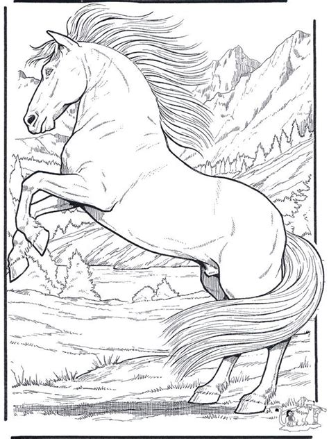 realistic animal coloring pages free coloring pages of animals realistic