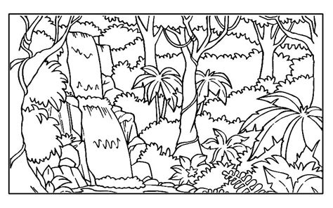 coloring page jungle rainforest coloring pages endangered species coloring