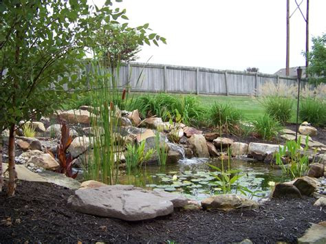 backyard ecosystem how much does a pond cost in central kentucky h2o designs
