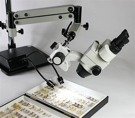Zoom Stereo Microscope Xtl 2600 xtl axial zoom stereo microscope for through axis