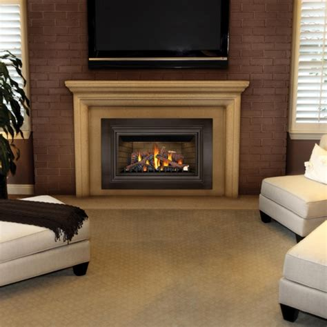 Accessories For Gas Fireplace by Fireplaceinsert Napoleon Gdizc Gas Insert Inspiration