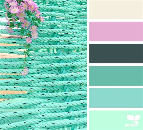 design seeds instagram color brights design seeds