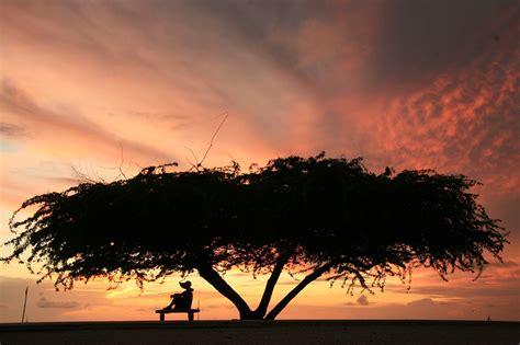 immagini natalizie le pi belle immagini natalizie viaggio nelle isole pi 249 belle e pi 249