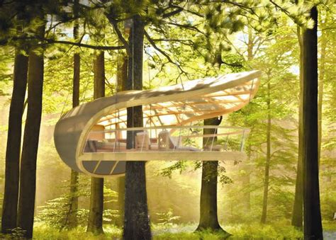 ideas  cozy  incredibly cool tree houses