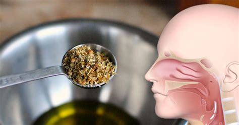 Keto Detox Lung Congestion by Drink Lung Healing Oregano Tea For A Decongestant