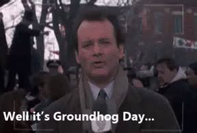 groundhog day reddit groundhog day gif groundhogday billmurray groundhogsday