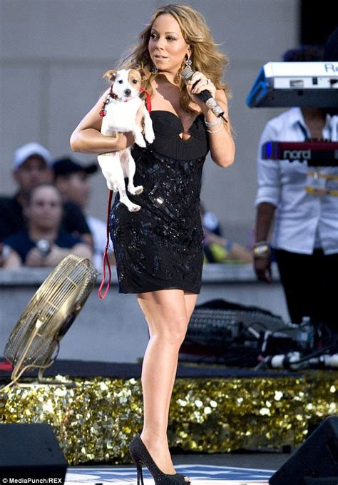 mariah carey dog house mariah carey and nick cannon locked in custody battle over their eight dogs daily