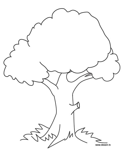 preschool coloring page of a tree tree coloring page ready to be printed preschool fall