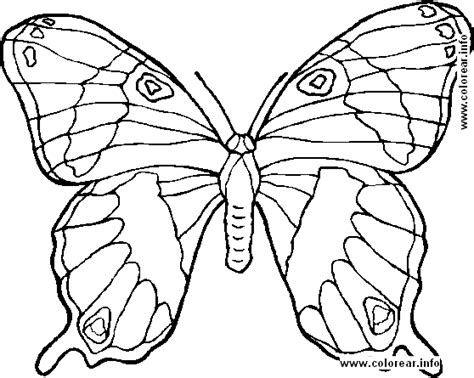 transmissionpress coloring pages