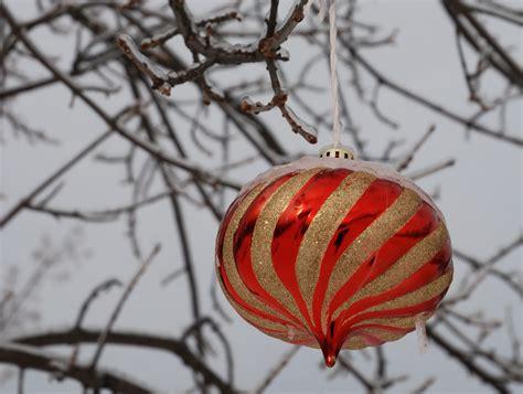 Meg Cabots Nanowrimo by Happy Holidays Nj Fraser