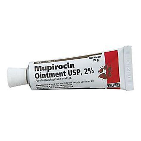 mupirocin for dogs mupirocin ointment 2 percent 22gm
