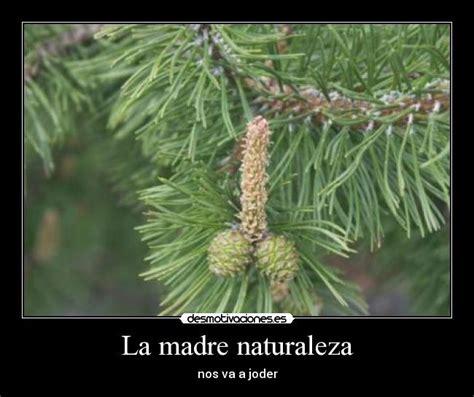 imagenes inspiradoras de la naturaleza la madre naturaleza desmotivaciones