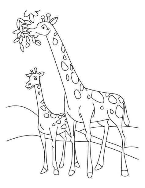giraffe family coloring pages giraffe and calf coloring coloring animals 1