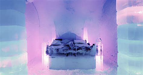 What Temperature Do Bed Bugs Freeze by Bed Bugs Resistant To Freezing Says New Research