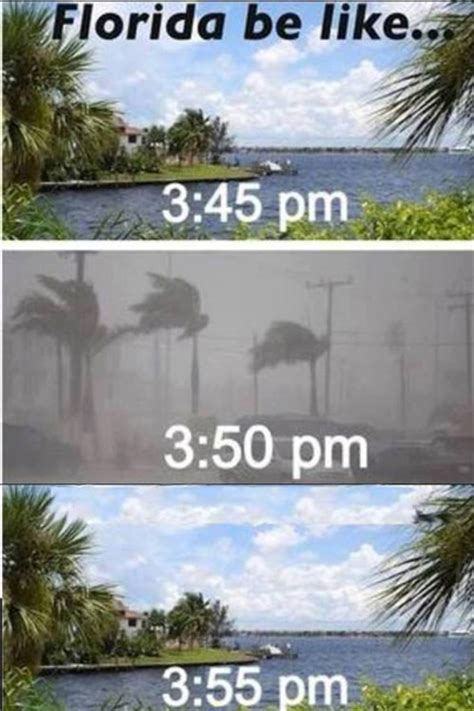Florida Rain Meme - florida weather