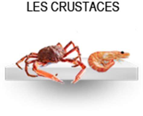 Cuisson Dormeur by Cuisson Des Araign 233 Es De Mer H 233 L 232 Ne