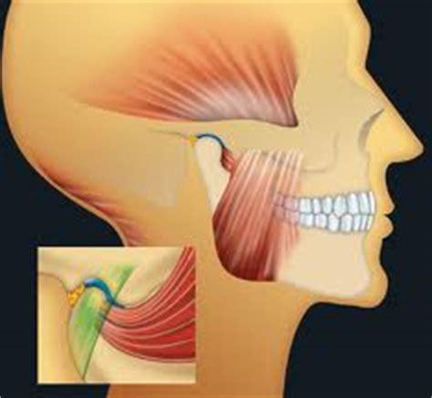 traitement reli 233 aux articulations et muscles faciaux