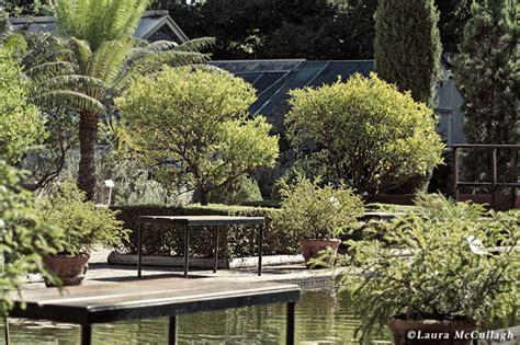Stellenbosch Botanical Gardens Summer In The Stellenbosch Botanical Gardens S Pics Ramblings