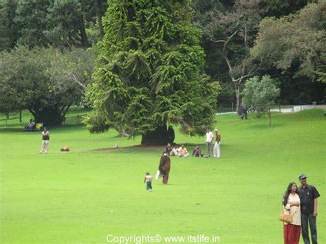 ooty botanical gardens ooty botanical gardens tamil nadu tourism places of
