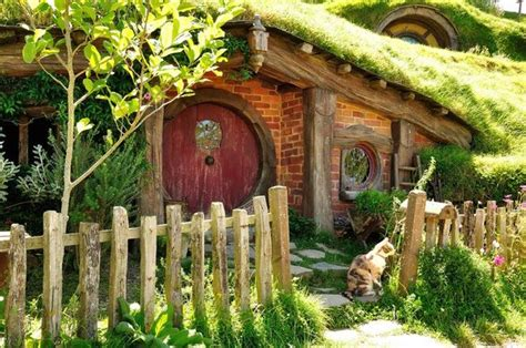 real hobbit house cat from hobbiton new zealand traveling cats travel