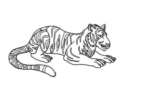 coloring page of a siberian tiger pin kids zone coloring siberian tiger on pinterest