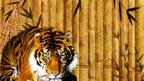 bamboo tiger hd desktop wallpaper widescreen high