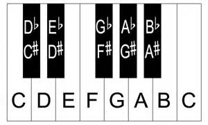 Piano Key Notes by Printable Piano Keys With Notes Eprintablecalendars Com