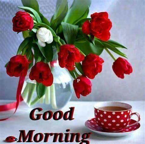 latest good morning beautiful images