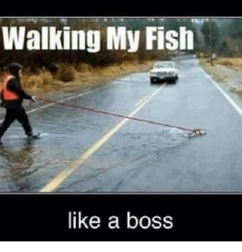 Fishing For Likes Meme - walking my fish like a boss funny meme on sizzle