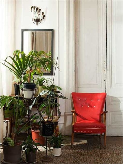 Home Decor With Plants Modern Interior Decorating Ideas Incorporating Indoor Plants Into Healthy And Beautiful Room Decor