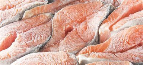 come cucinare salmone salmone surgelato cucinarepesce