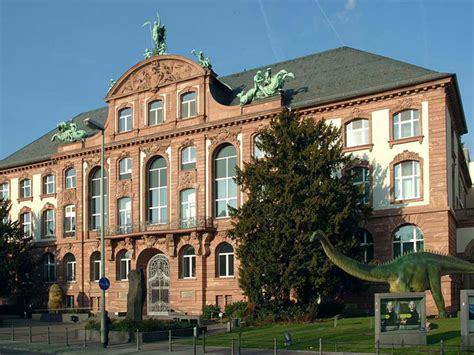 Floor Planners by Senckenberg Museum Of Natural History Frankfurt Tourism