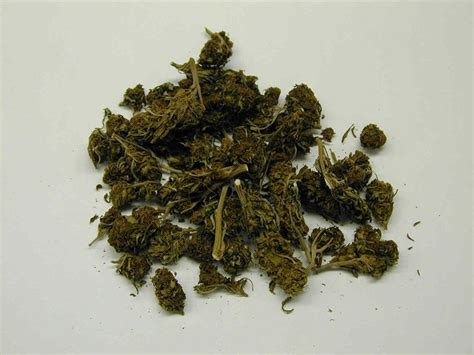 Herb Pot by Marijuana Partnership For Drug Free Kids Where