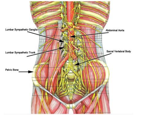 how long does a spinal block last for c section lumbar sympathetic block albuquerque lumbar sympathetic block