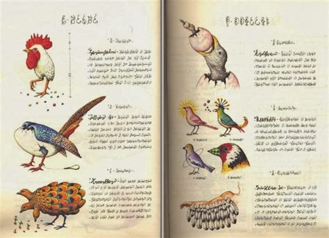 an introduction to the codex seraphinianus the strangest