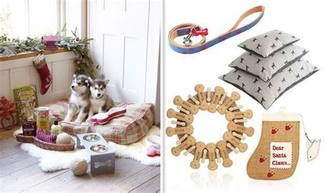 best christmas gifts for pets style life style