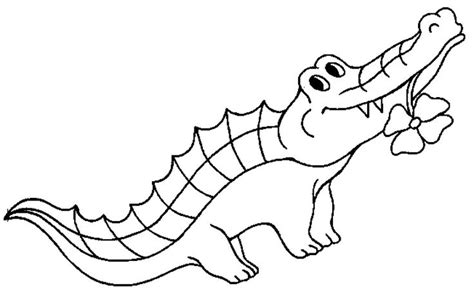 cartoon lizard coloring pages 31 best reptiles images on pinterest kids net reptiles