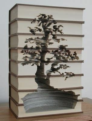 libro bonsai the art of modern country style modern country craft inspiration book art