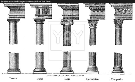 five types of column architecture engraving vector