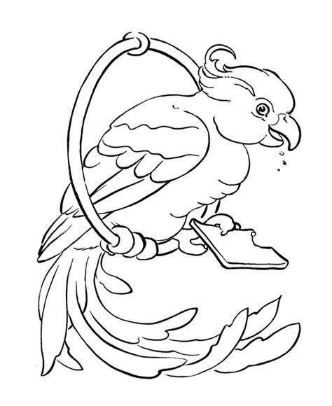coloring image parrot parrot outline az coloring pages