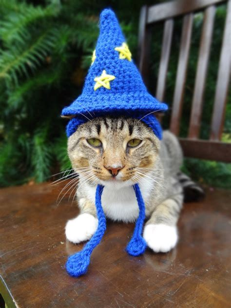 wizard cat wizard cat hat wizard cat costume the wizard by