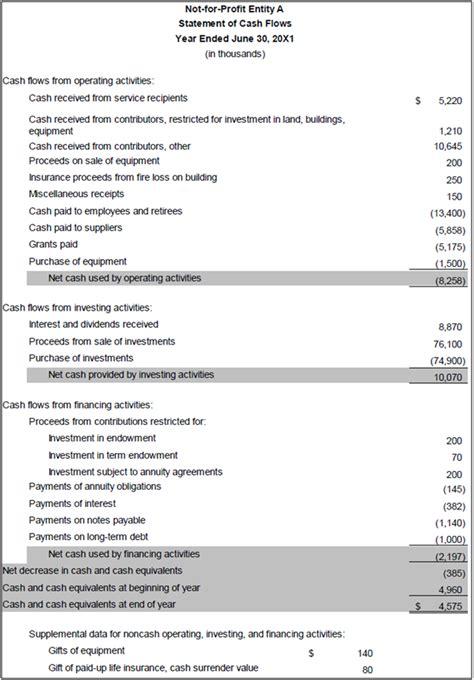 sle cash flow for non profit non profit financial statement presentation expected to