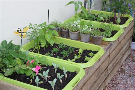 What To Plant In A Small Vegetable Garden My New Vegetable Garden By The Gardening