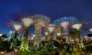 Botanic Gardens Lights Why Kl Keeps Cutting Down Trees While Singapore Doesn T